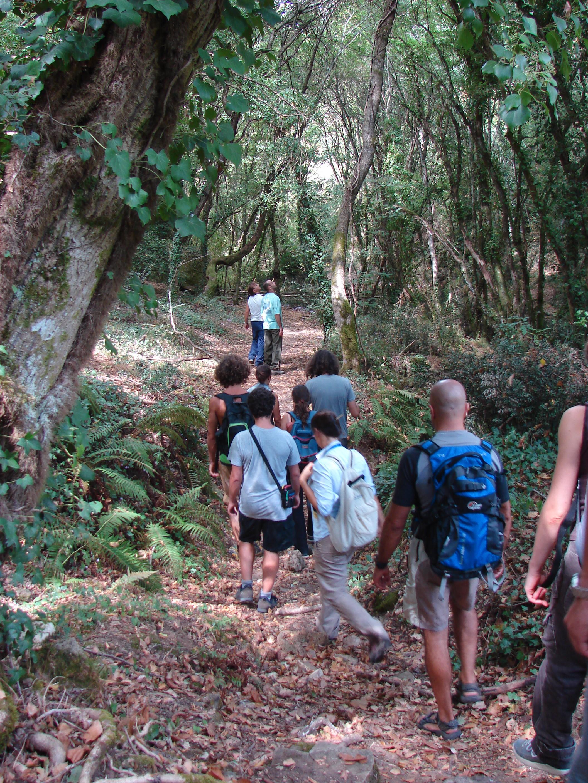 sulle tracce del popolo dei boschi