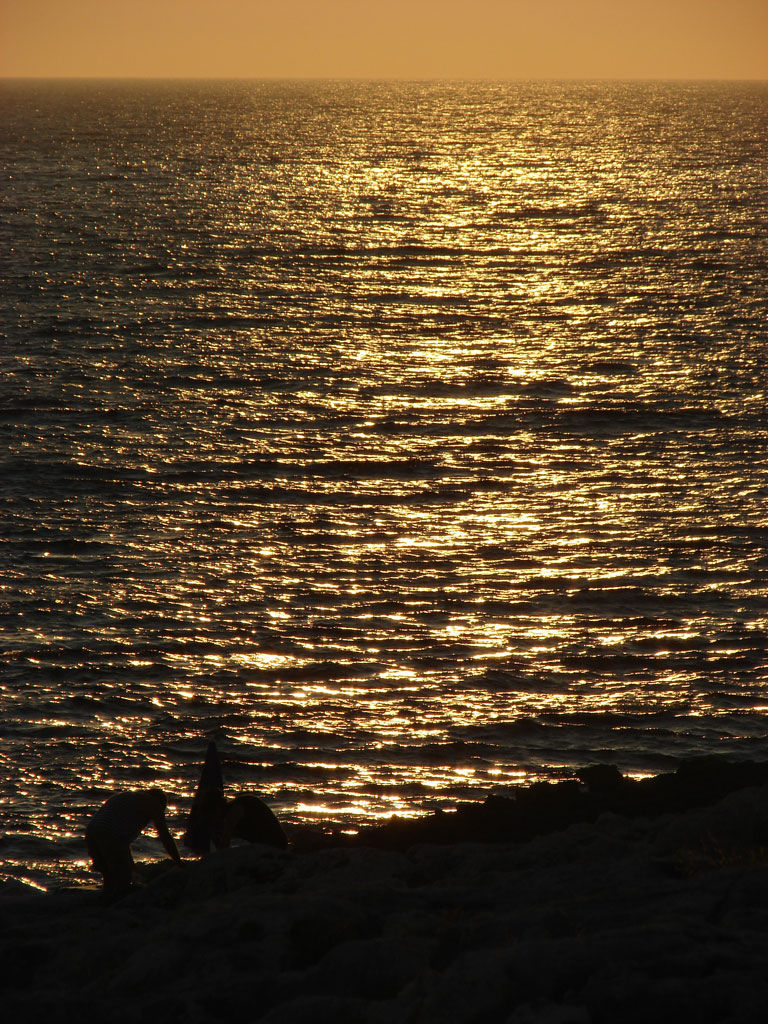 2008-08-02_19-14-30_Silvia