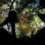 2005-10-23_13-08-18 [Matteo]