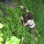 2008-06-15_15-29-28_Zorretta